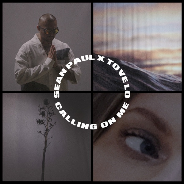 Sean Paul feat. Tove Lo - Calling on me