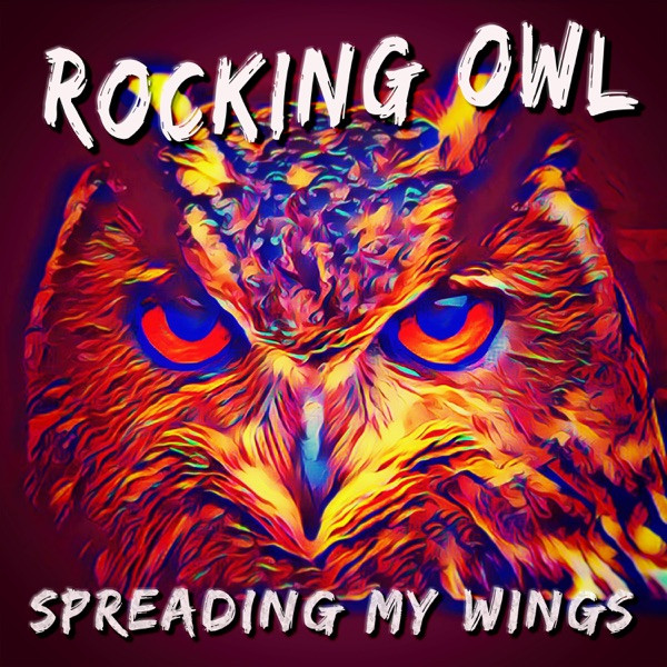 Rocking Owl - Something To Believe In