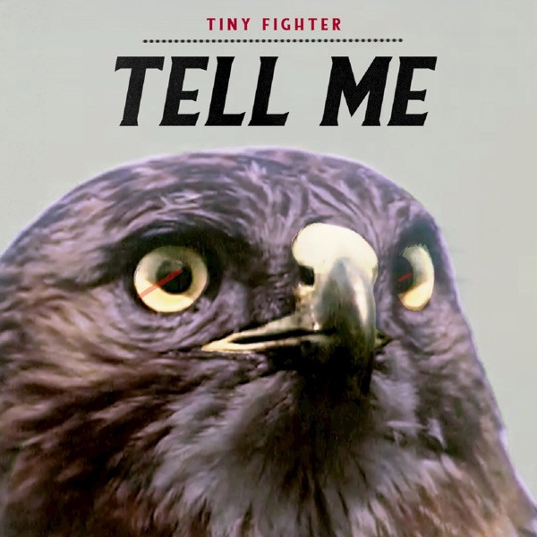 TINY FIGHTER - TELL ME