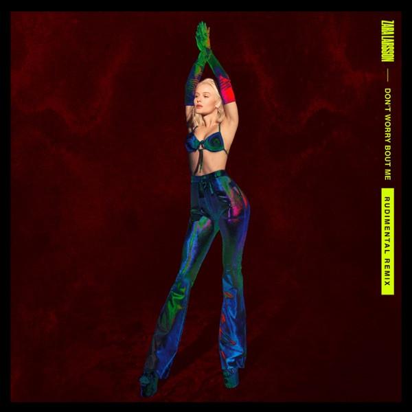 Zara Larsson - Don't Worry Bout Me [Rudimental Remix]