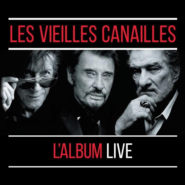 Les Vieilles Canailles - Toute la musique que j'aime