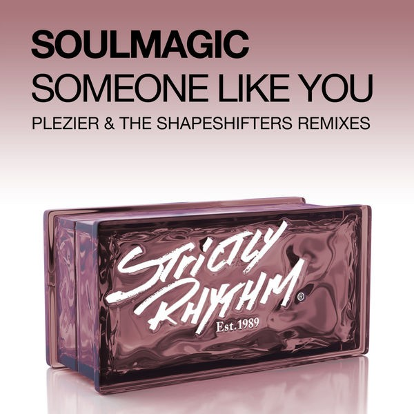Someone Like You (Plezier Remix)