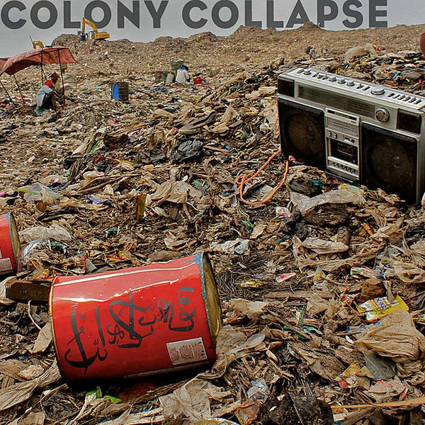 Colony Collapse - Beats Antique Remix