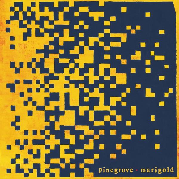 Pinegrove - The Alarmist